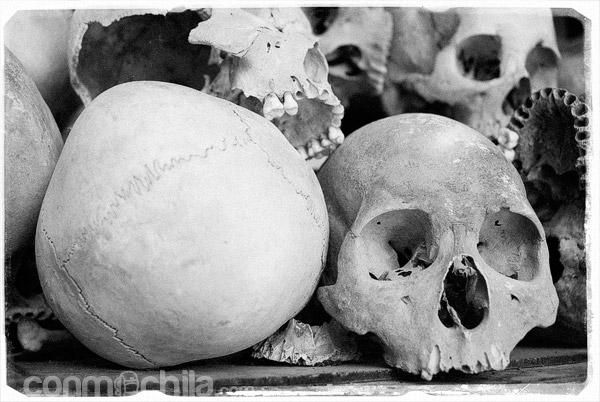 Cráneos en Choeung Ek
