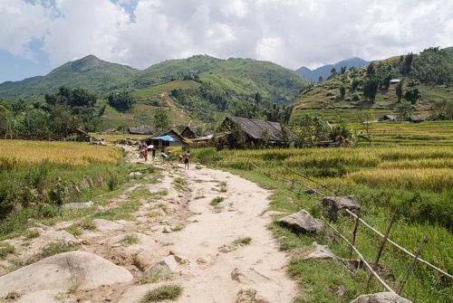Camino que lleva a un poblado