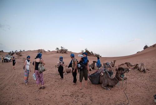 La sedienta llegada al campamento en el desierto del Sahara