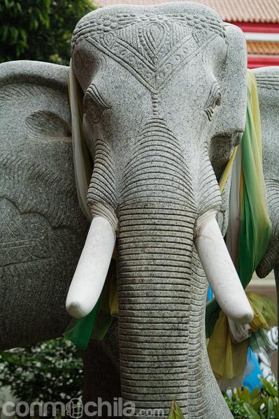 Un elefante a la entrada del templo
