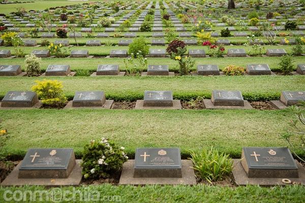 Tumbas del cementerio