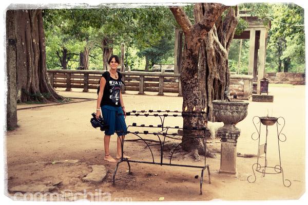 Por los jardines de la estatua Samadhi