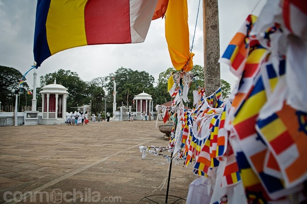 Las banderas que adornan los alrededores