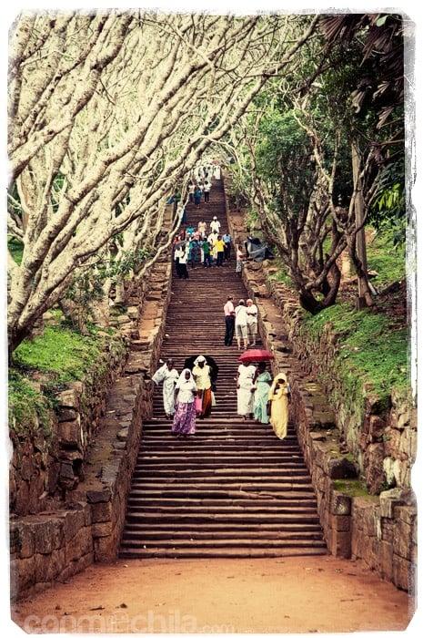 La laaaarga escalera con los peregrinos