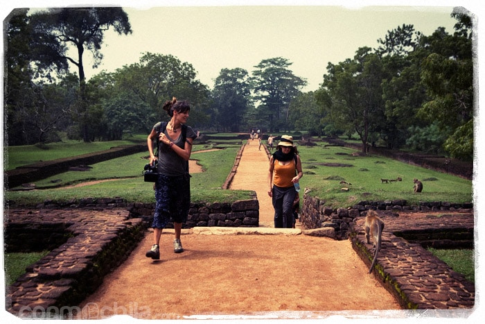 Subiendo por entre los jardines de Sigiriya