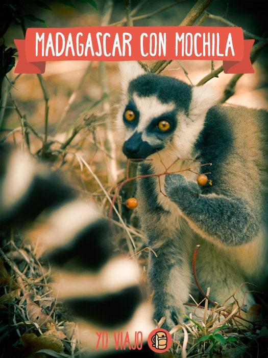 Madagascar con mochila