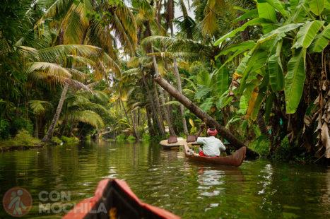Los estrechos (y fotogénicos) canales de los Backwaters de Kerala