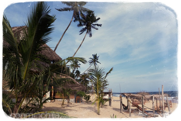 La playa frente al resort