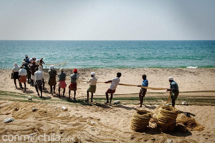Los pescadores cantando y sacando la red