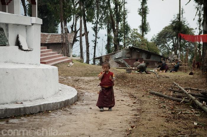 Uno de los pequeños monjes