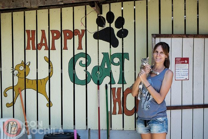 """""""Happy Cat House"""" como en casa"""
