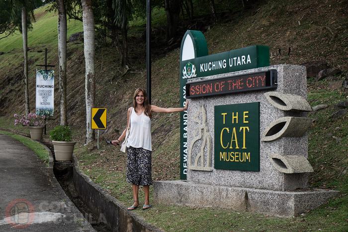 Llegando al museo de los gatos
