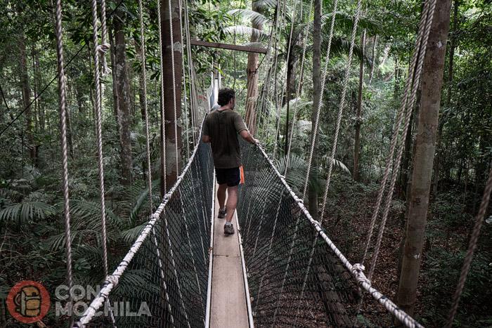Toni en un puente