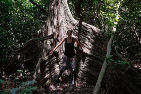 Explorando y aprendiendo en la jungla