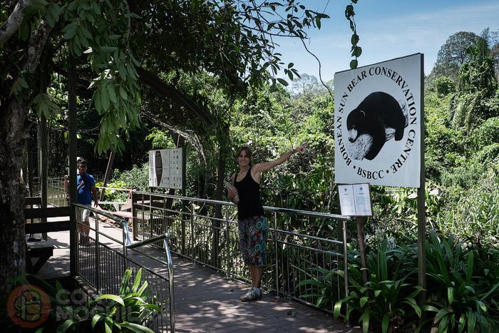 El centro de conservación de los osos