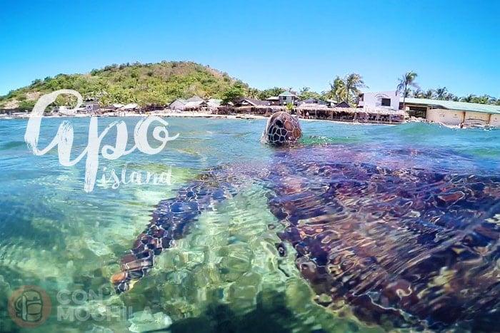 Welcome Apo Island