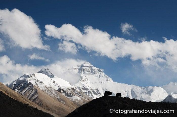 En la base del monte Everest, la cima del mundo