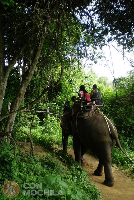 Turistas montando en un elefante @FloriGreen