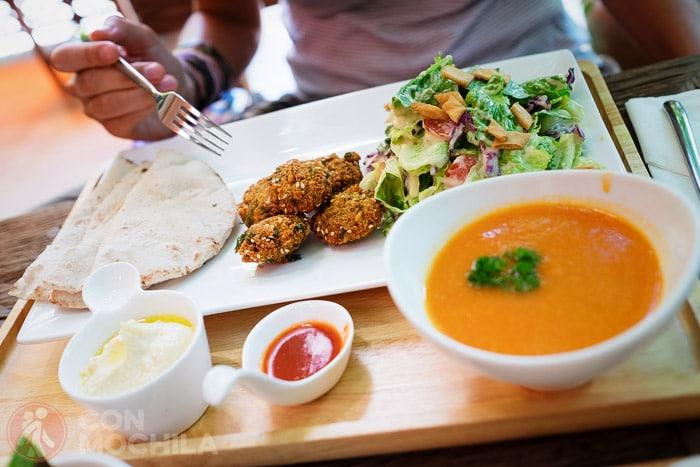 """Falafel for life"" del Suananda vegetarian garden"