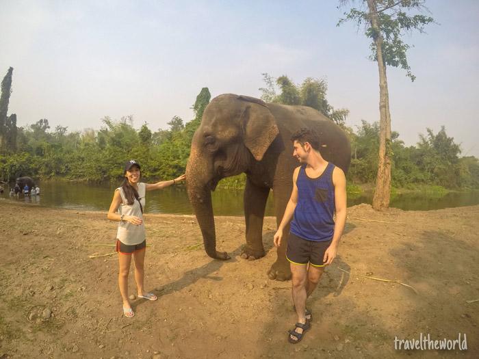 Escapada a Tailandia: Elephants World