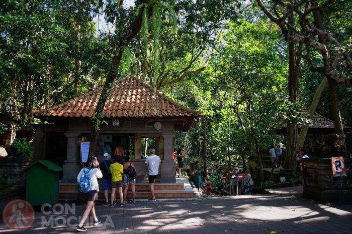 Entrada al Ubud Monkey forest