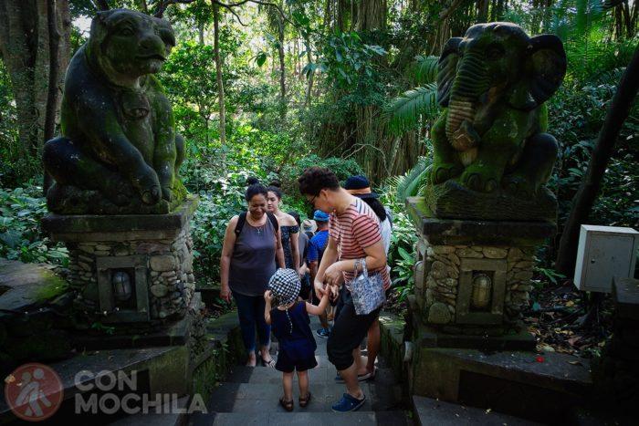 Acceso a distintos niveles del Monkey Forest
