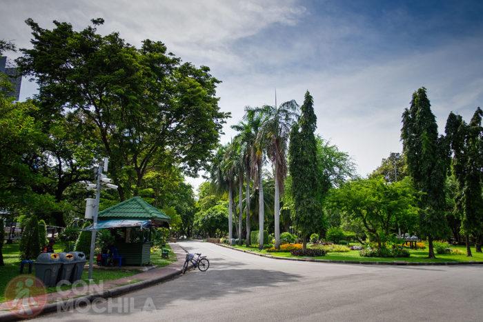 Zona asfaltada en el parque