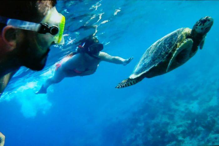 Itinerario de viaje a Indonesia: Haciendo snorkel con tortugas en las islas Gili