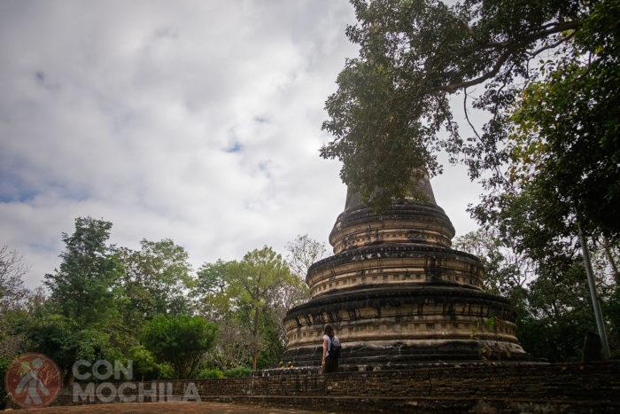 Otra imagen del chedi de Wat Umong