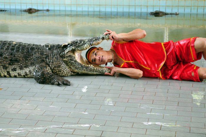 Espectáculo con cocodrilos en Tailandia